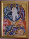 Trasfigurazione (per mano di Daniela Cambiaghi cm 61x46)