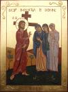 crucis8_g